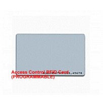 Access Control RFID Card (PROGRAMMABLE)
