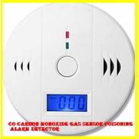 CO Carbon Monoxide Gas Sensor Poisoning Alarm Detector