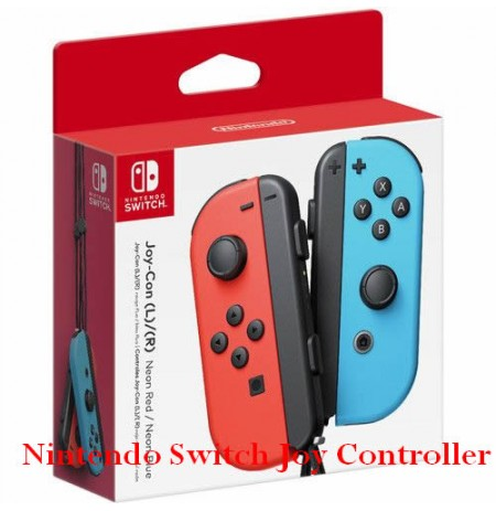 Nintendo Switch Joy Controller